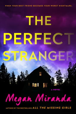 the-perfectstranger