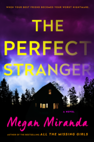 the-perfectstranger